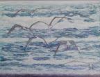 Gabbiani, olio su tela, 50 x 70 cm, 2008