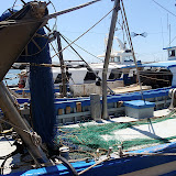 Monogràfic Marí 2010 - P5290222.JPG