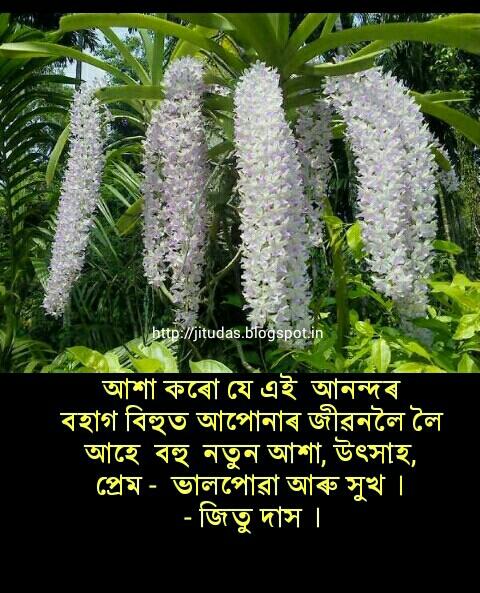 Assamese Rongali Bihu 2016 wishes by Jitu Das