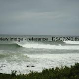 _DSC7240.thumb.jpg