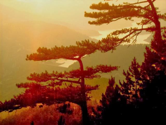 Konkurs za najbolju studentsku fotografiju 2011 - Ilija%2BResimic%2B3.JPG