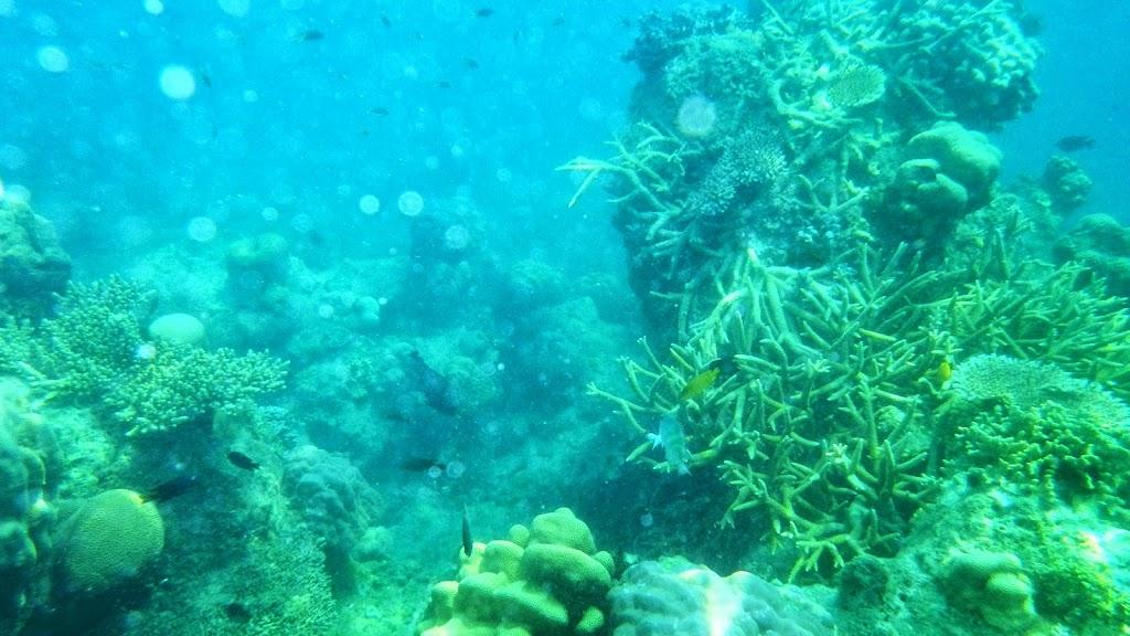 ngebolang-pulau-harapan-5-6-okt-2013-pen-15