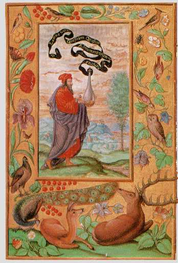 Philosopher With Flask From Splendor Solis, Hermetic Emblems From Manuscripts 1
