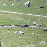 Griebal 2006 - CIMG6539.JPG