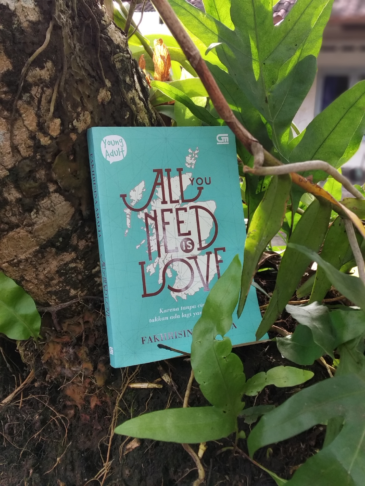 Review Novel All You Need is Love