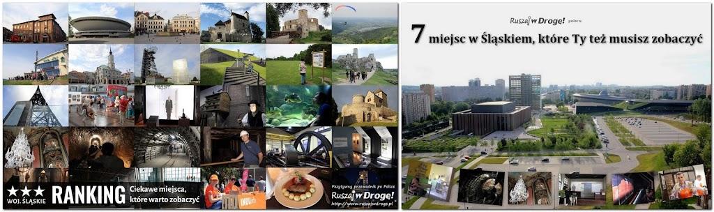 Współpraca ze Śląską Organizacją Turystyczną