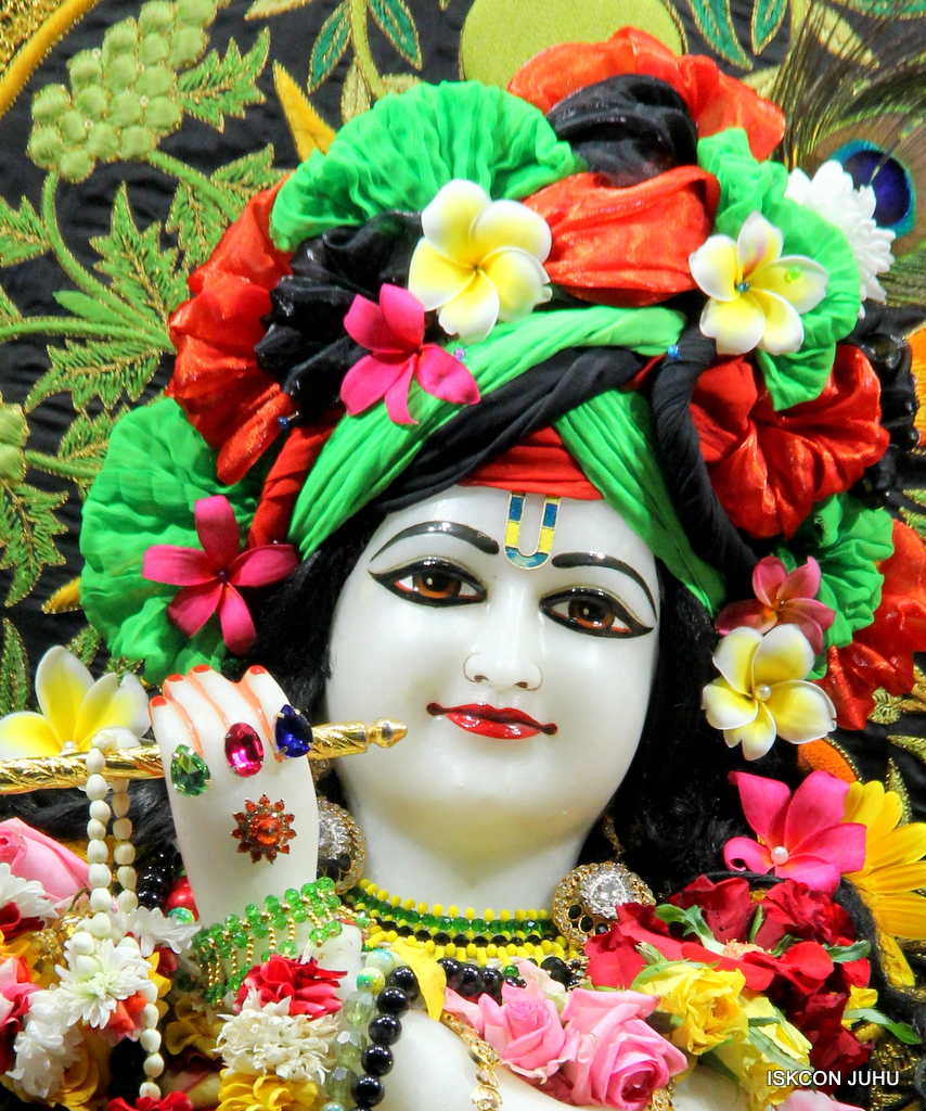 ISKCON Juhu Sringar Deity Darshan on 19th Nov 2016 (6)
