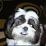 Chantel Patterson's profile photo