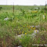 05-20-13 Arbuckle Field Trip HFS2013 - IMGP5125.JPG