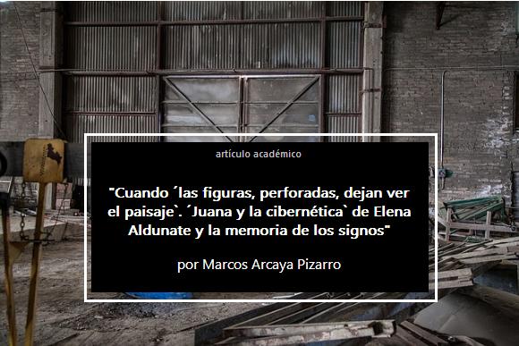 Elena Aldunate, Marcos Arcaya Pizarro, artículo académico[6]