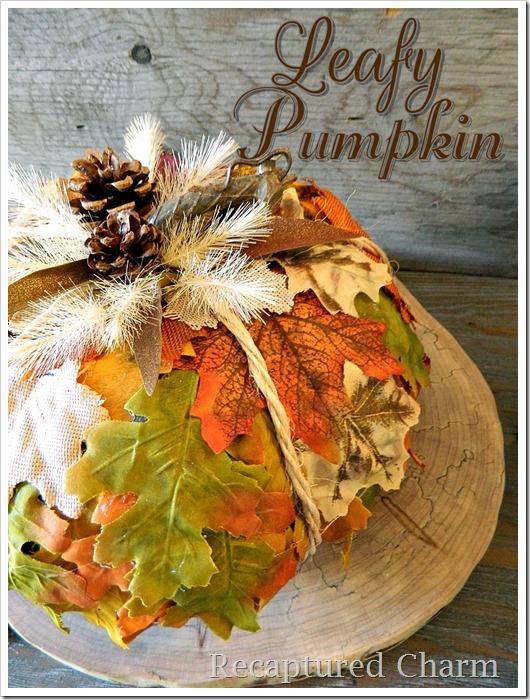 leafy pumpkin 11 a