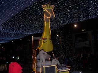 2013.12.08-027 la girafe