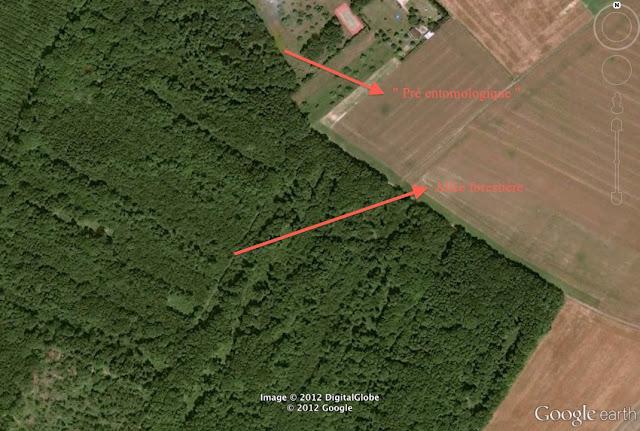 Principaux sites d'observation en bordure de la Forêt de Dreux