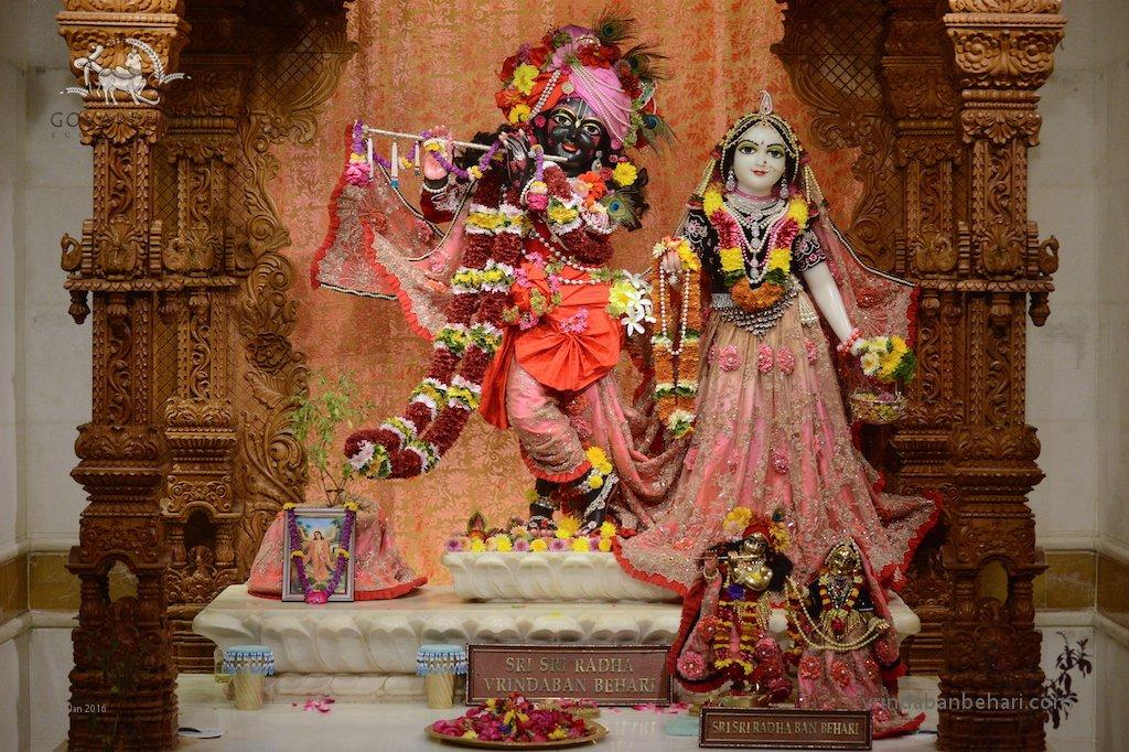 ISKCON GEV (Wada) Deity Darshan 26 Jan 2016  (2)