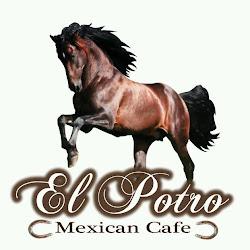 El Potro Mexican Cafe's profile photo