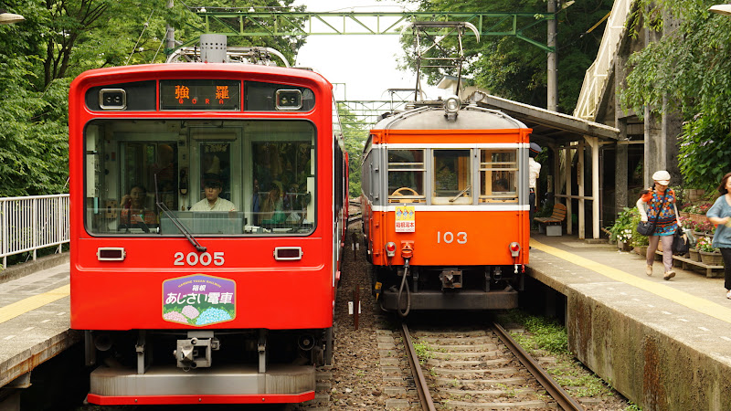 箱根 箱根登山鉄道 あじさい 写真4