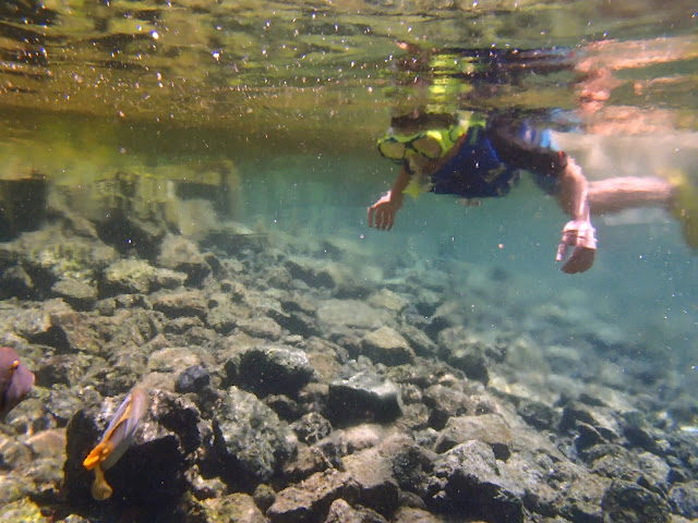 Kids Snorkeling at Kapoho Tide pools