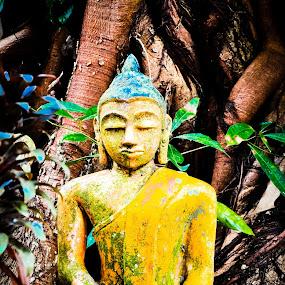 Buddha by Wei Seong Yan - Artistic Objects Antiques