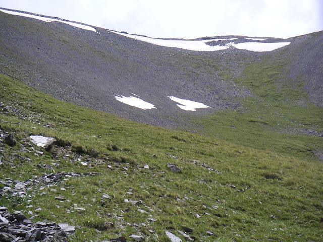 Biotope de Parnassius delphius satanas. Vers 3600 m, à l'ouest de Dolon Pass, Kirghizstan, 15 juillet 2006. Photo : F. Michel