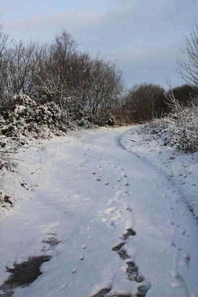 18-snow