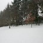 tn_lachaux-2010-12-11.jpg