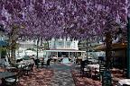 Фото 9 Azak Hotel