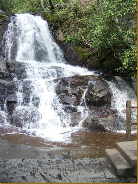 Laurel Falls (24)