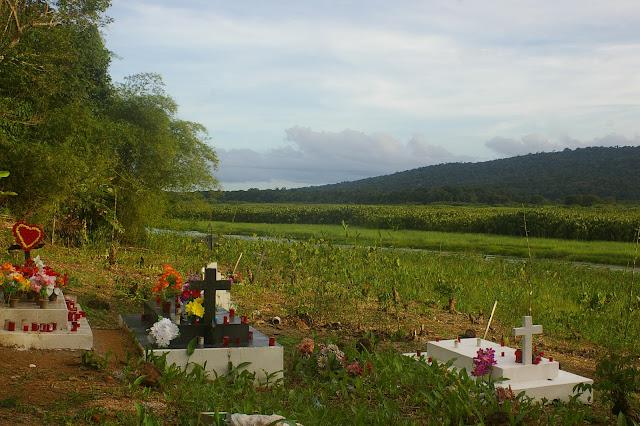 Cimetière en bordure du marais de Kaw (Guyane). 18 novembre 2011. Photo : J.-M. Gayman