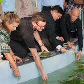 phuket event Mai Khao Marine Turtle Foundation launches Marine Turtle Nesting Site Conservation and Rehabilitation Project 015.jpg