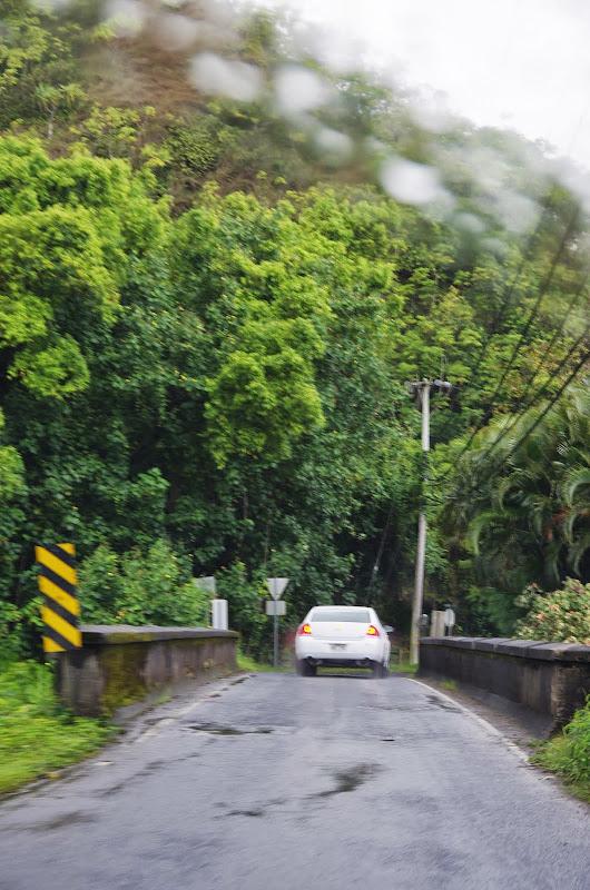 06-25-13 Annini Reef and Kauai North Shore - IMGP9266.JPG