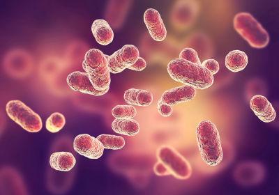 gum-bacterium-s.jpg