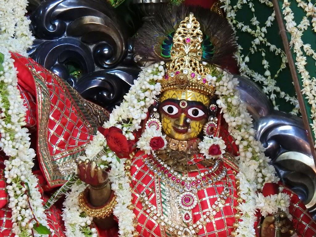 Radha Govind Devji Deity Darshan 16 August 2016 (22)