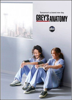Greys Anatomy 8ª Temporada   Dual Audio