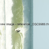 _DSC9988.thumb.jpg