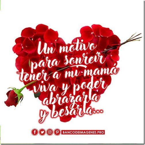 dia de la madre 2018 (15)