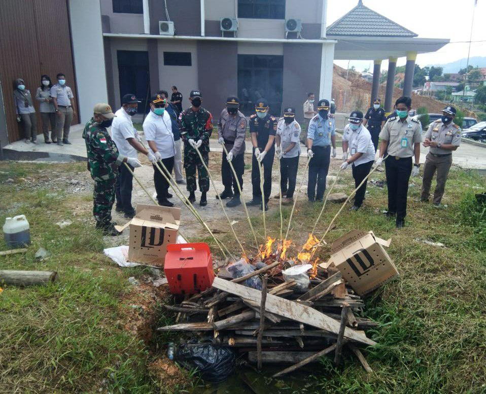 Satgas Pamtas Yonif 642/Kapuas Bersama Karantina Pertanian Musnahkan Barang Ilegal Asal Malaysia