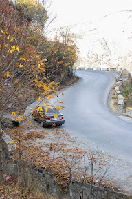 Colors of Autumn on Nathia Gali road, Galiyat