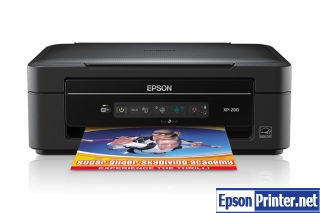Reset Epson XP-20 printing device by program