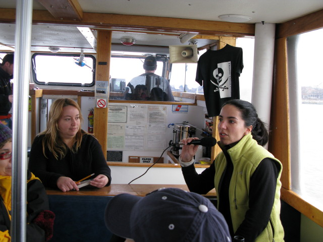 Seal Cruise - seal25.jpg