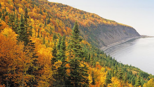 Forillon National Park, Gaspe, Quebec, Canada.jpg