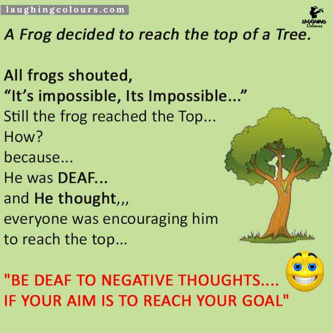 Inspirational stories  A frog decided to reach the top of a tree