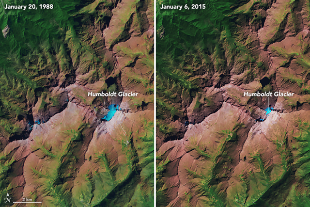 The relatively recent changes to Venezuela's Humboldt Glacier are evident in this image pair, acquired on 20 January 1988, with the Thematic Mapper on Landsat 5 (left) and on 6 January 2015 with OLI (right). The images are false-color to better differentiate between areas of snow and ice (blue), land (brown), and vegetation (green). According to Braun, the glacier in 1988 spanned about 0.6 square kilometers. By 2015 its area dropped to less than 0.1 square kilometers. Photo: Joshua Stevens / NASA Earth Observatory