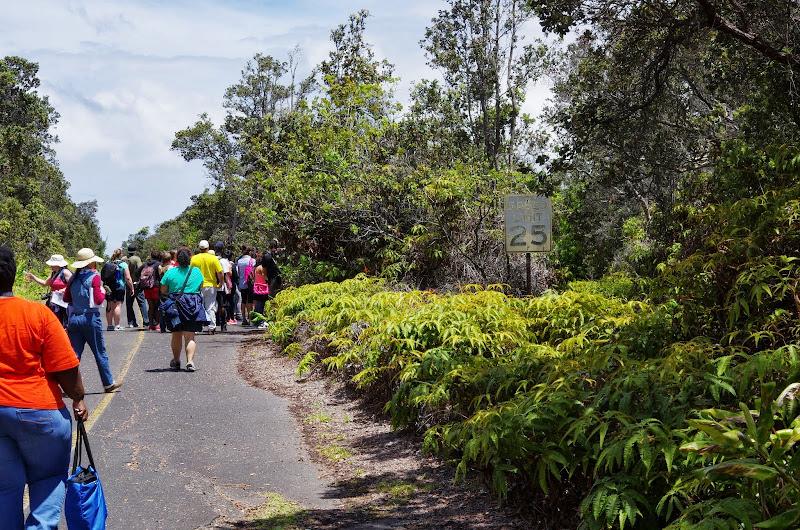 06-20-13 Hawaii Volcanoes National Park - IMGP7813.JPG
