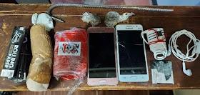Policiais penais apreendem drogas e celulares no Presídio de Ituiutaba I