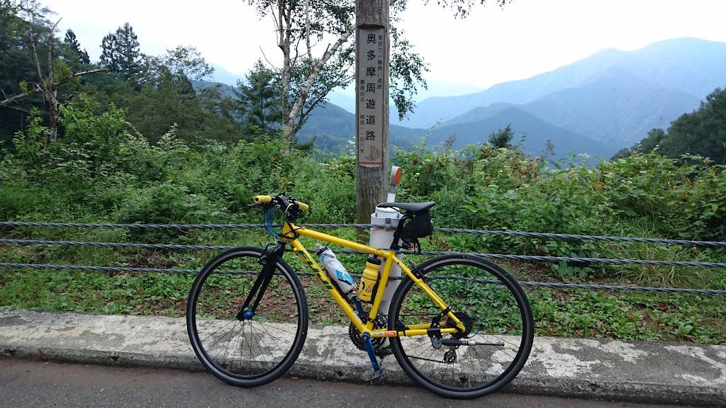 風張峠にてフジ パレットの写真