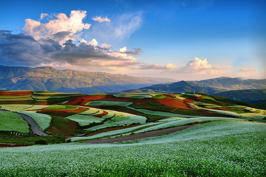 red-earth-dongchuan-3