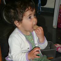 Tu BiShvat 2009  - 2009-02-08 18.54.48-1.jpg