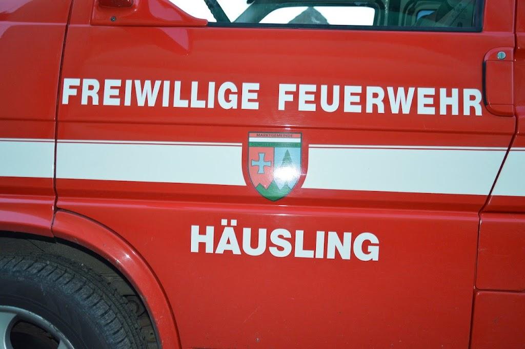 FF Haeusling 2014_ (0)