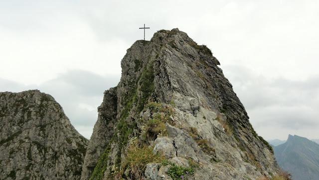 Tour Oberstdorf Älpelesattel Allgäu - Edelweiß am Höfats Blick Wildergruppe