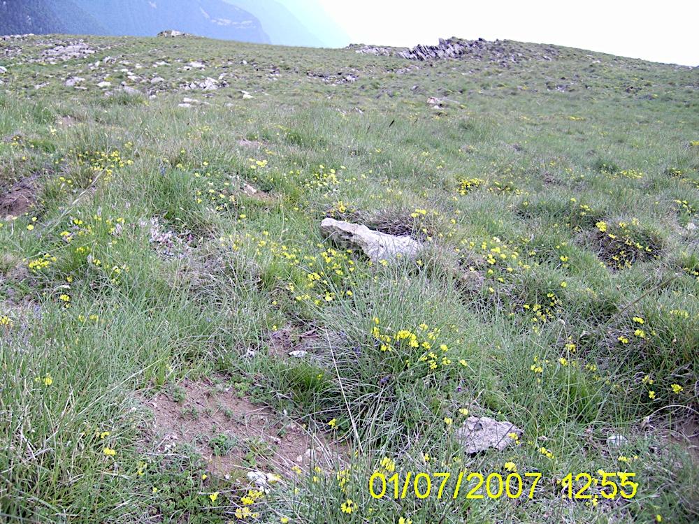Taga 2007 - PIC_0169.JPG